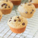 Banana Oat Blender Muffins